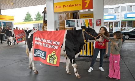 BETA zet koeien en Herr Otto Flick in tegen accijnzen